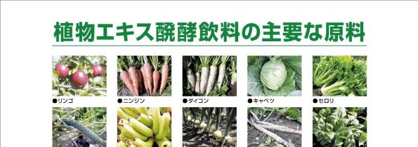 発酵野菜50種ブレンド